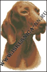 Курцхаар (набор для вышивания крестом)/feyamagazin.ru
