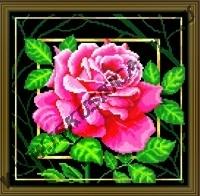 Цветок. Страсть (набор для вышивания крестом)