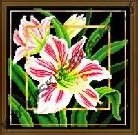 Цветок. Гиппеаструм (набор для вышивания крестом)